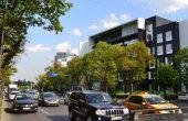 Park Avenue Offices spații birouri nord Herăstrău vedere spre Piata Charles de Gaulle