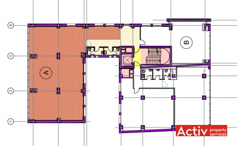 Calea Floreasca 141-143 birouri de inchiriat Bucuresti nord imagine plan existent
