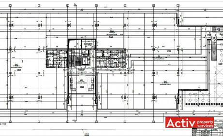 ROMCAPITAL CENTER spații birouri Timișoara central, plan general